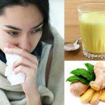 सर्दी जुकाम दूर करते हैं ये घरेलु नुस्खें, बिमारी को जड़ से मिटा देते हैं